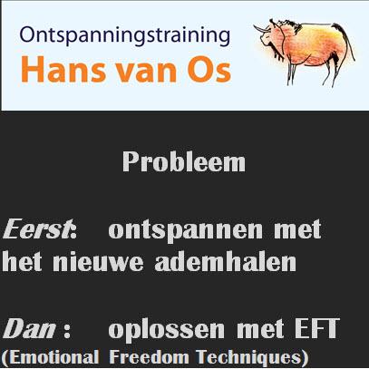 Ontspanningstraining Hans van Os  probleem oplossen 2